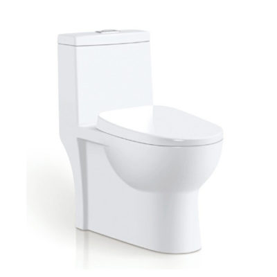 One Piece Toilet Oilet series OTTON015