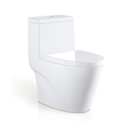 One Piece Toilet Oilet series OTTON020